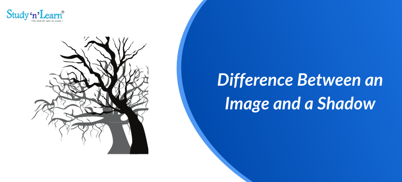 Difference Between Image and Shadow