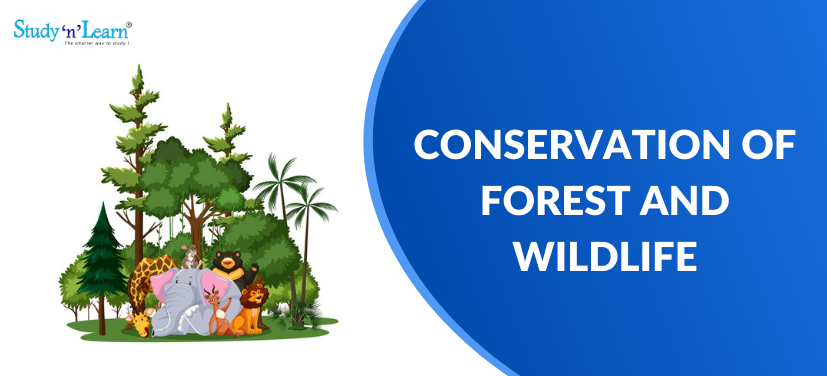 Conservation of Forest and Wildlife