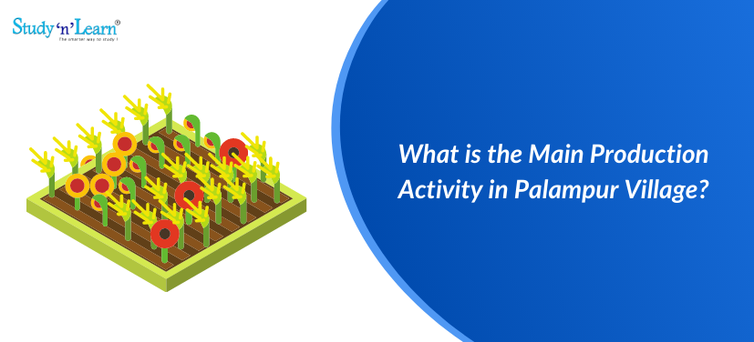 What is the Main Production Activity in Palampur Village?